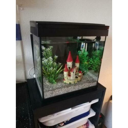 Aquarium 20L met filter, thermostaat en LED licht